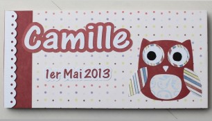 41-Camille